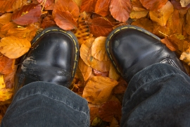 Self Portrait - the Boots in Autumn (links to)
