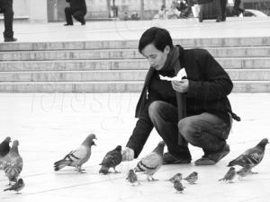 Feeding the Pigeons (in Black and White)