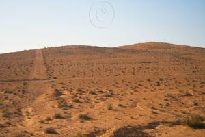 Sahara Reg