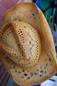 Straw Western Style Hat