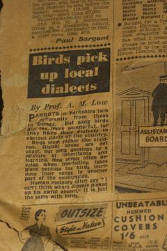 1956 - Parrots have Accents