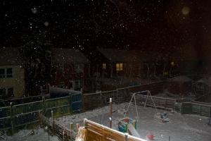 Snow in the Dark II