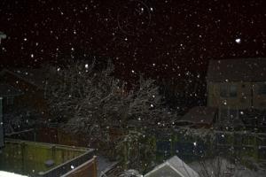 Snow in the Dark I
