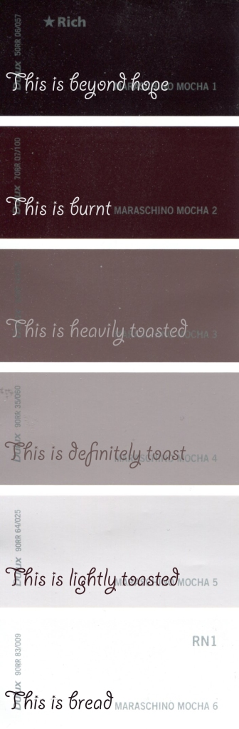 A Guide to Toast - for Husband's (colour scale)