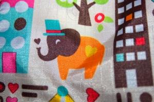 Cute Elephant Closeup